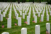 Grant Stones for Cemetery