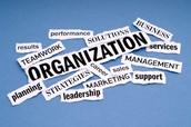Weekly Organization