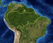 מפת לווין של האמזונס