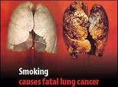 The damages of cigarettes