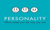 What is a personality psychologist?