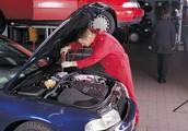 Wide variety of job duties and helpful skills