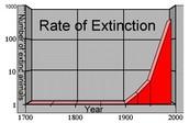 Extinction Rates Rising