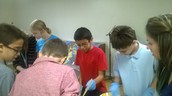Science Lab- dissection