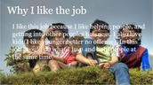 Why I like the Job