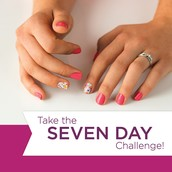 2) 7 Day Challengers