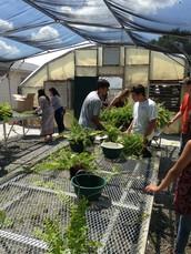 Horticulture: Scott Cheyne, Instructor