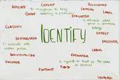 Self-Image & Identity