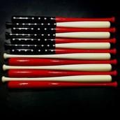 USA Bats