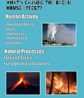 Effects of The GreenHouse Effect