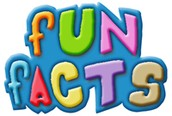 Fun Facts About TOURS