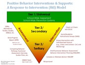 What are Tier 3 PBIS Supports?