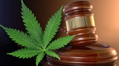 Ohio Launches Task Force For Medical Marijuana Issue
