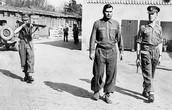 Commandant Josef Kramer's arrest by the British liberators