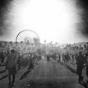 Coachella Arena- Artists