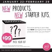 New consultant kits!
