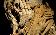 peruvian mummy found by drone