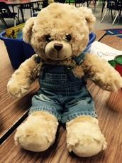 TEX the Teddy Bear