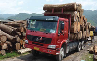 Combating the Illegal Timber Trade