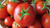 A mature tomato