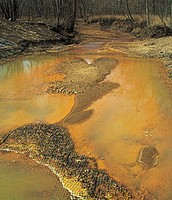 Contaminated Water by Acid Mine Drainage