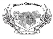 BOXER GUARDIANS