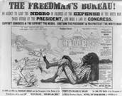The Freedman's Bureau