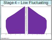 Population Pyramid - Stage 4