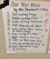 Our Bat Book