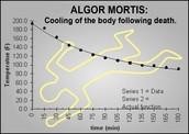 Algor Mortis