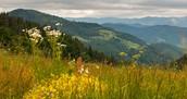 Natuur in Bulgarije