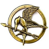 Mocking Jay Pin