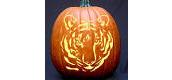 Tamanend Halloween Spirit