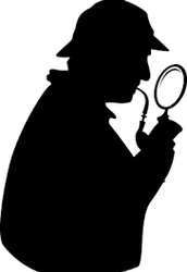THEME: Solve the Mystery of the Academic Plan!