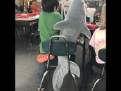 Studying with SHARKS
