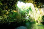 Whole view of Ik-Kil-Cenote during mid-day