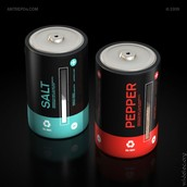 Battery Salt and Pepper hodlers
