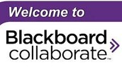 Coaching Sessions Take Place in Blackboard Collaborate (BBC) Virtual Classroom. You will NEED HEADSET & MICROPHONE