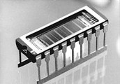 1989 RAM model