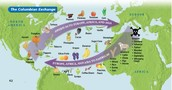 What event led new foods into Western Europe?