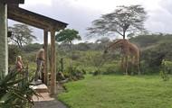 Hatari Giraffe Manor