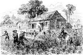 Tobacco & Slaves