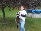 My first goose