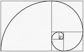 Fibonacci Spiral!