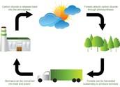 Is biomass renewable or nonrenewable