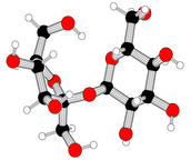 Carbohydrate Model