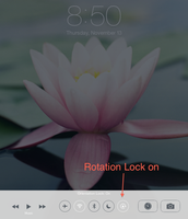 Rotation Lock in Control Center ON