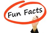 info and fun facts