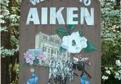 We are Aiken
