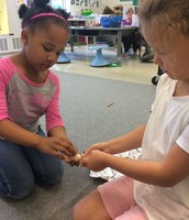 Working together to glue magnets onto shells